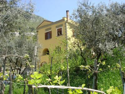 Antico Casale Farm holidays Piano di Sorrento - Province of Naples
